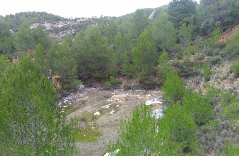 La bassa abandonada de la Foia
