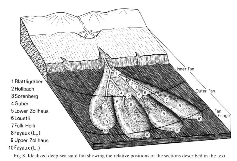 Icnofòssils del Priorat. Estudi paleontològic preliminar de la comarca del Priorat