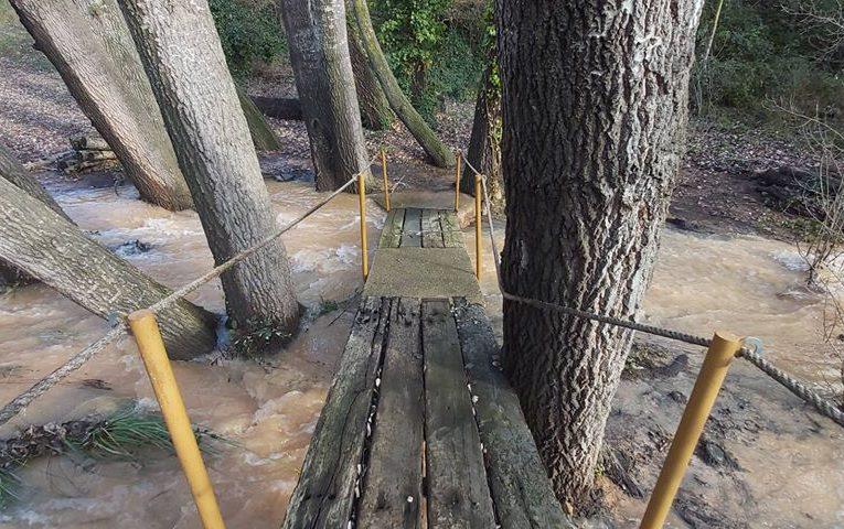 Tanquen l'accés a l'Aubereda pel risc de caiguda d'arbres i el desbordament del barranc